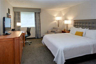 Newly Renovated King Guestroom