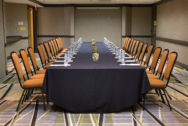 Raleigh Meeting Room