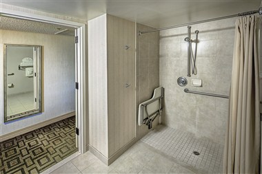 Disabled Bathroom (Roll-in shower)
