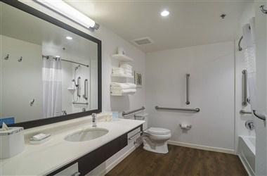 Bathroom - Handicap Accessible