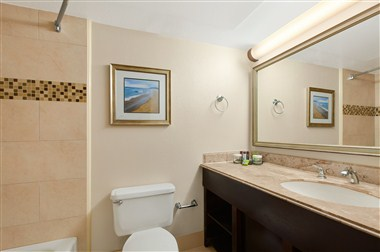 Two Double Bed Suite Bathroom