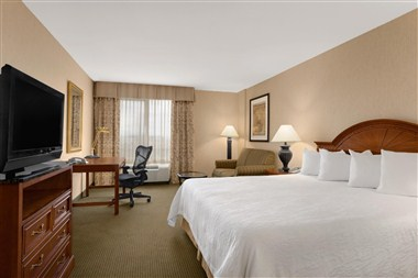 Guest Room - King Suite