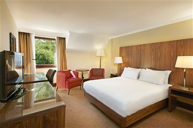 DOUBLE HILTON GUEST ROOM, CONTEMPORARY STYLE