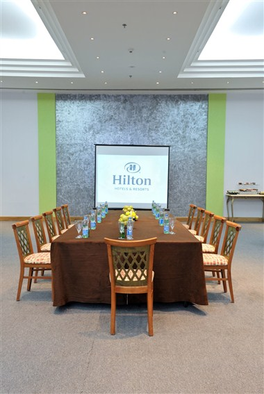 Meeting Room (Board Room)