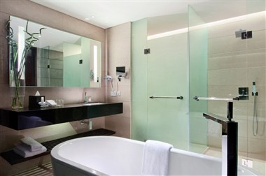 Executive Plus Marble Bathroom
