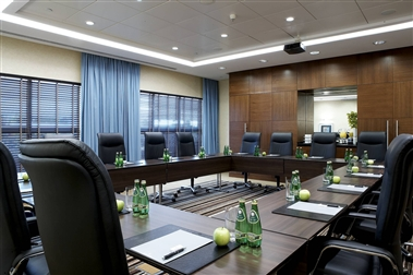 Hilton Meeting Rooms