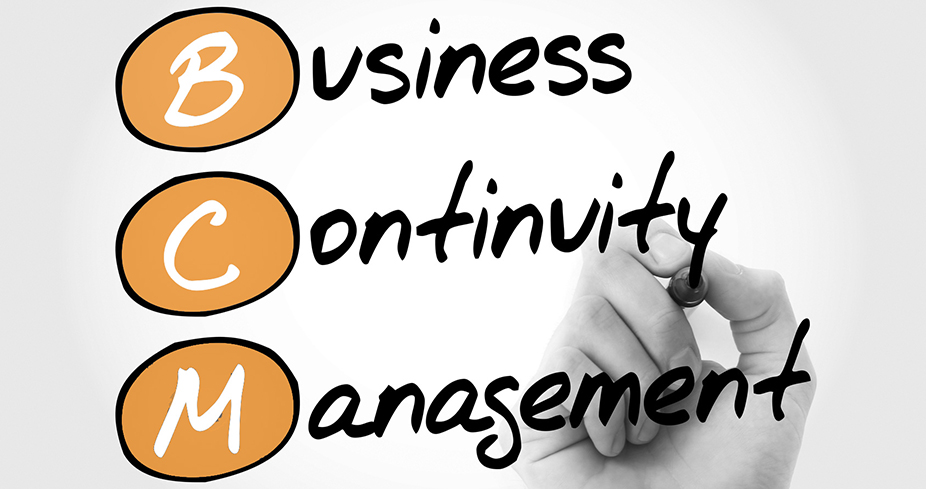 Business Continuity Management          - Lead Implementer