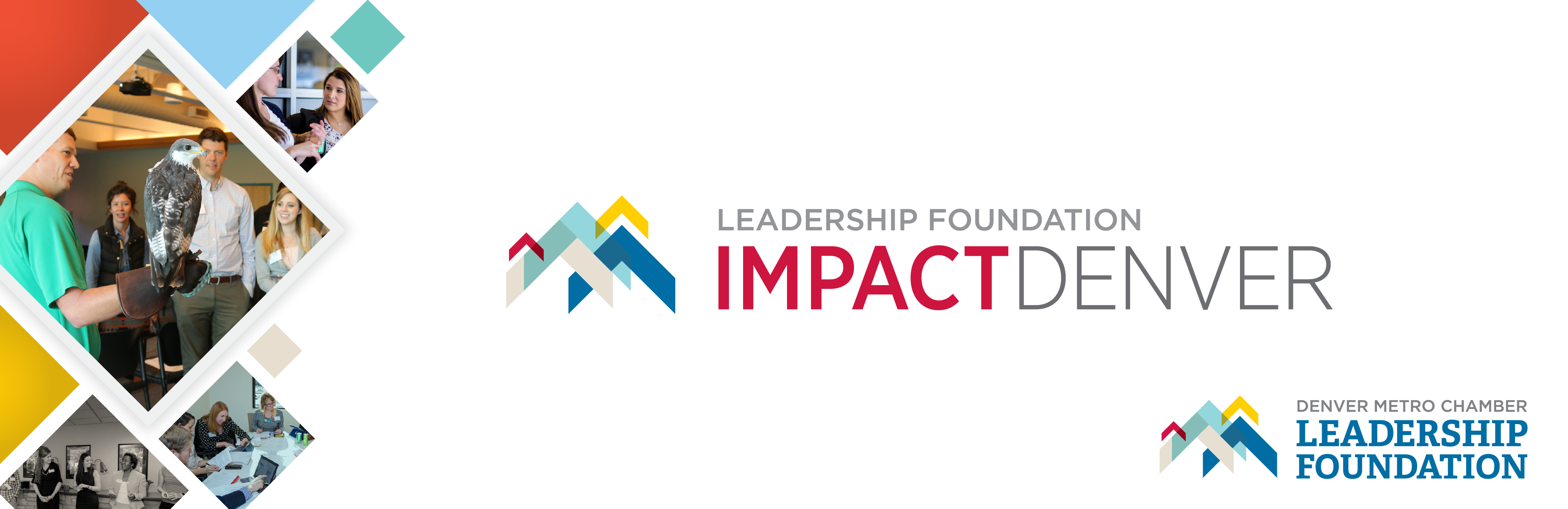 Impact Denver Fall 2018 Application