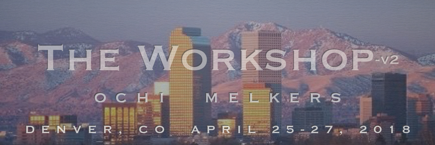 The Workshop V2-with Dr.'s Lane Ochi & Michael Melkers