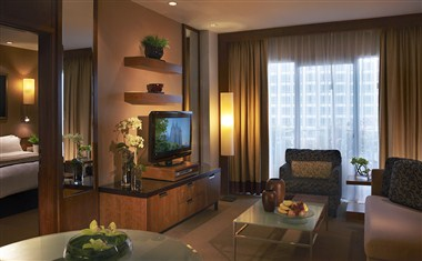 The Executive Suite Living Area