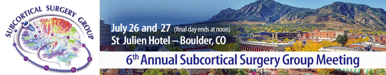 6th Annual Subcortical Surgery Group Meeting