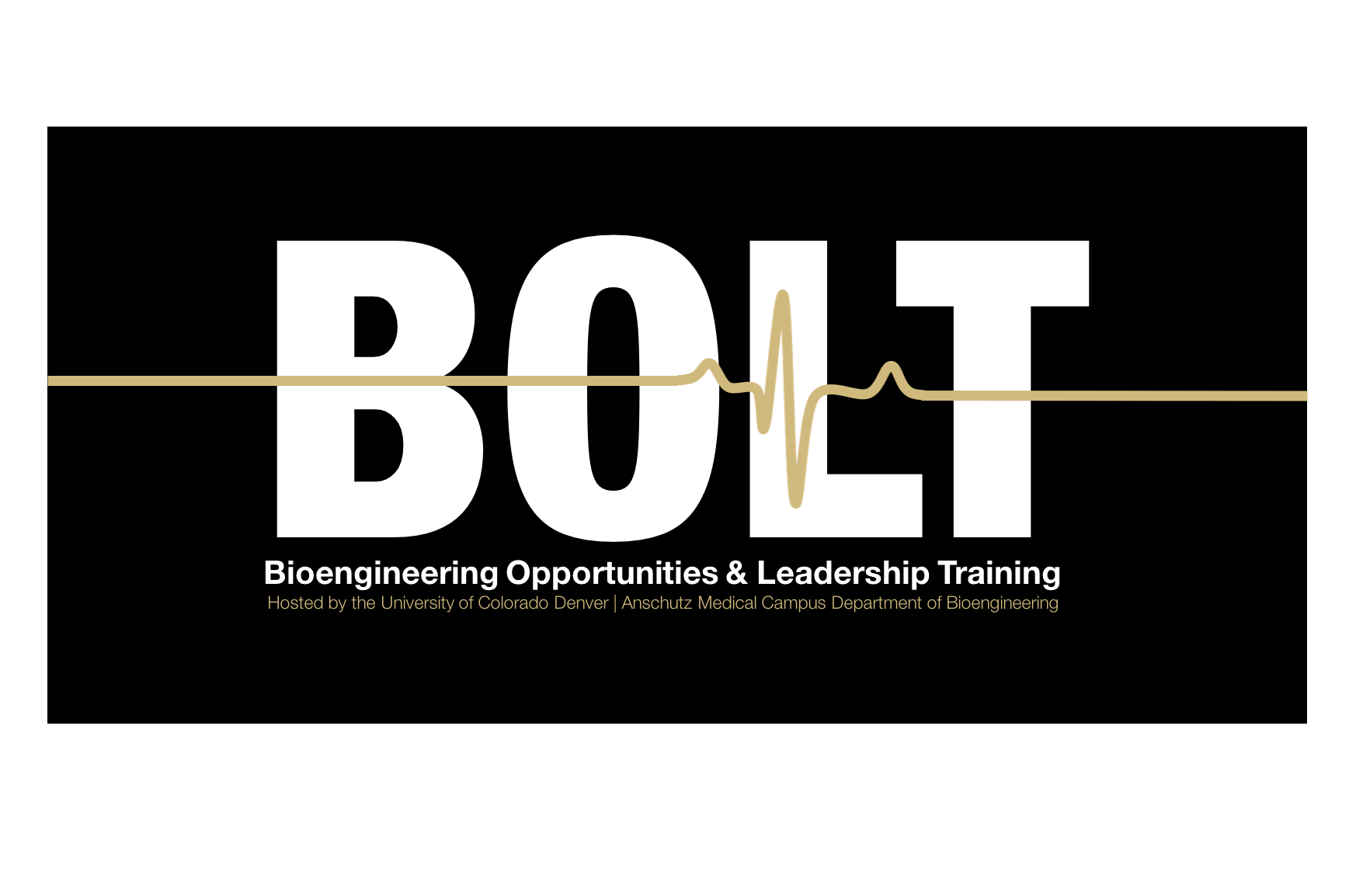 Bioengineering Opportunities and Leadership Training (B.O.L.T.) Summer Camp