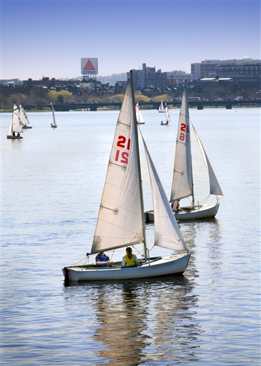 Sailboats in Charles River