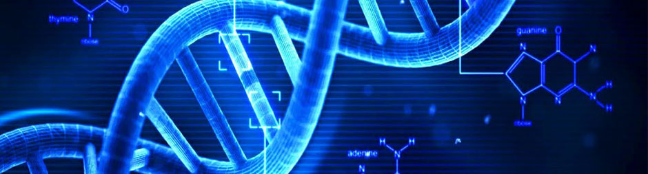Probabilistic Genotyping: Theory and Implementation