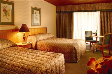 Premium Room with two beds