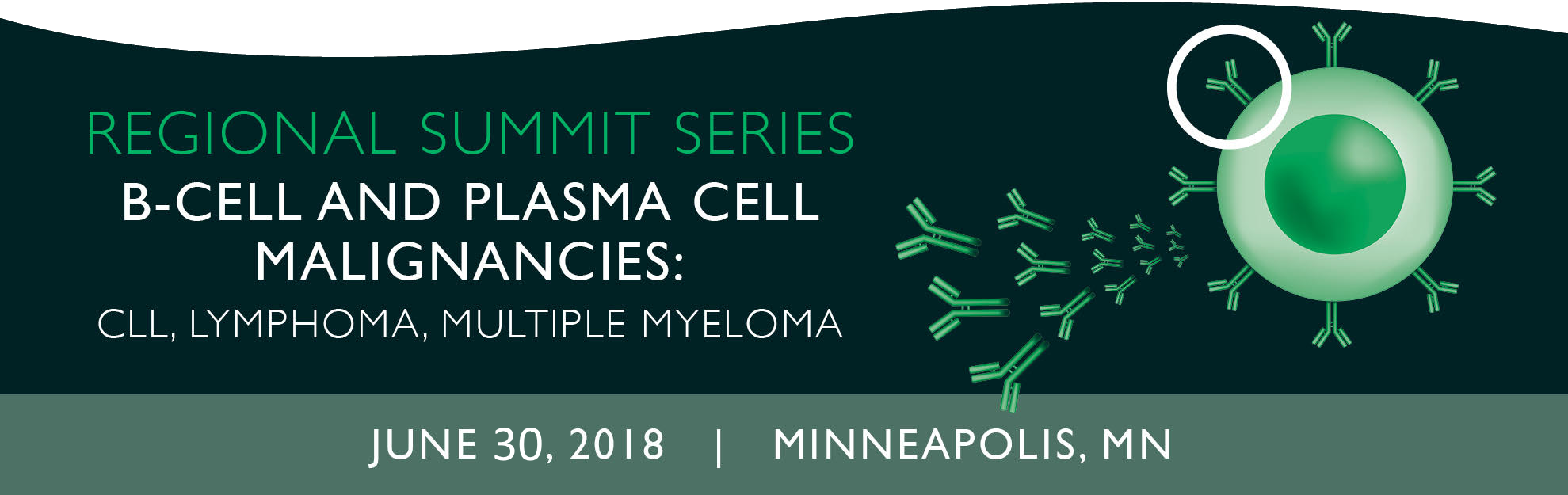 B-cell and Plasma Cell Malignancies Regional Summit - Minneapolis