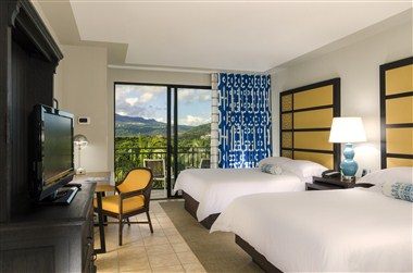 Rainforest View Room