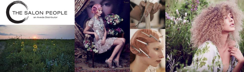 Aveda Hair Color Class I: Systems - St. Petersburg