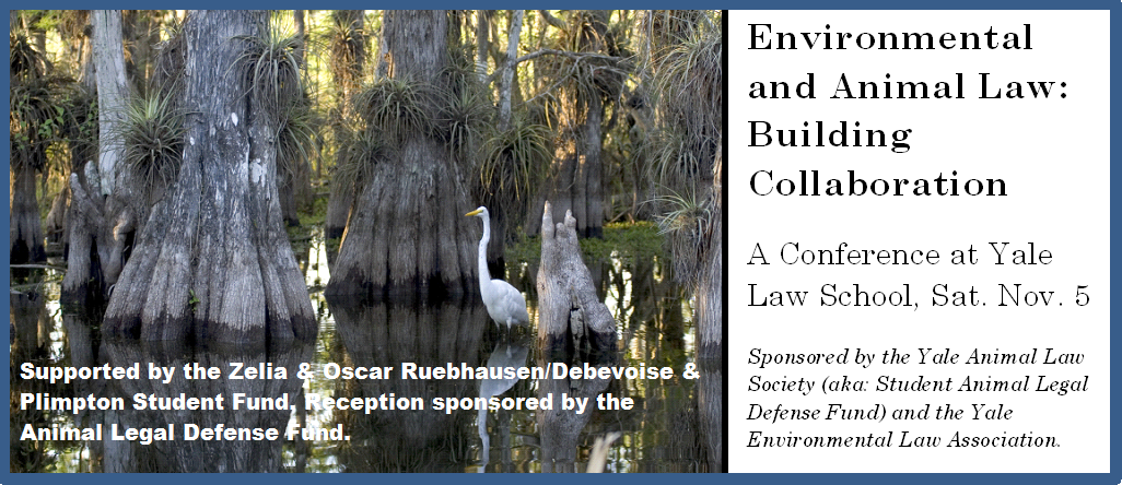 Animal Law and Environmental Law: Building Collaborations