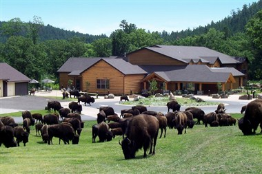 Creekside Lodge at The State Game Lodge