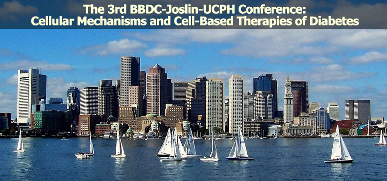 The 3rd BBDC-Joslin-UCPH Conference: Cellular Mechanisms and Cell-Based Therapies of Diabetes