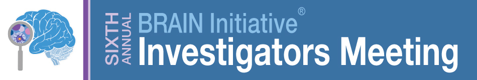 6th Annual BRAIN Initiative Investigators Meeting