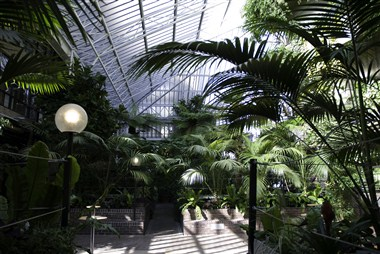 Barbican Conservatory Day