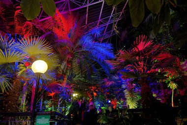 Conservatory at night
