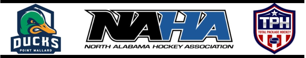 Learn to Play Hockey - Decatur October 2016