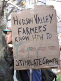 Hudson Valley Farmers Stimulate Growth