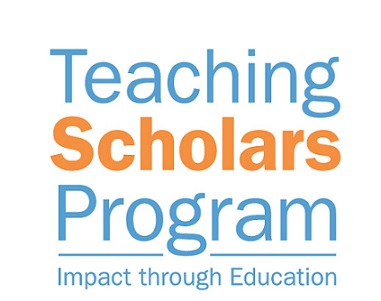 Teaching Scholars Program (TSP)