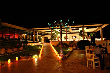 Palm Terrace at night