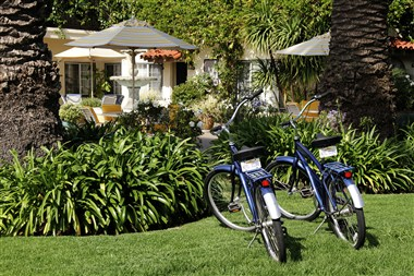 Beach Bike Cruiser Rentals