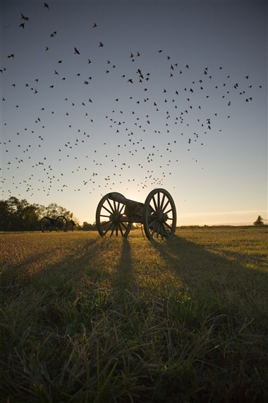 Malvern Hill