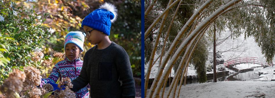 Jan-Feb-March 2020 Children and Family Programs at Duke Gardens