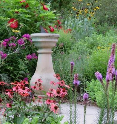 lannon butterfly garden 7-4-18 crop