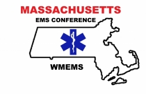 WMEMS-logo