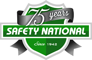 SafetyNationalLogo060617