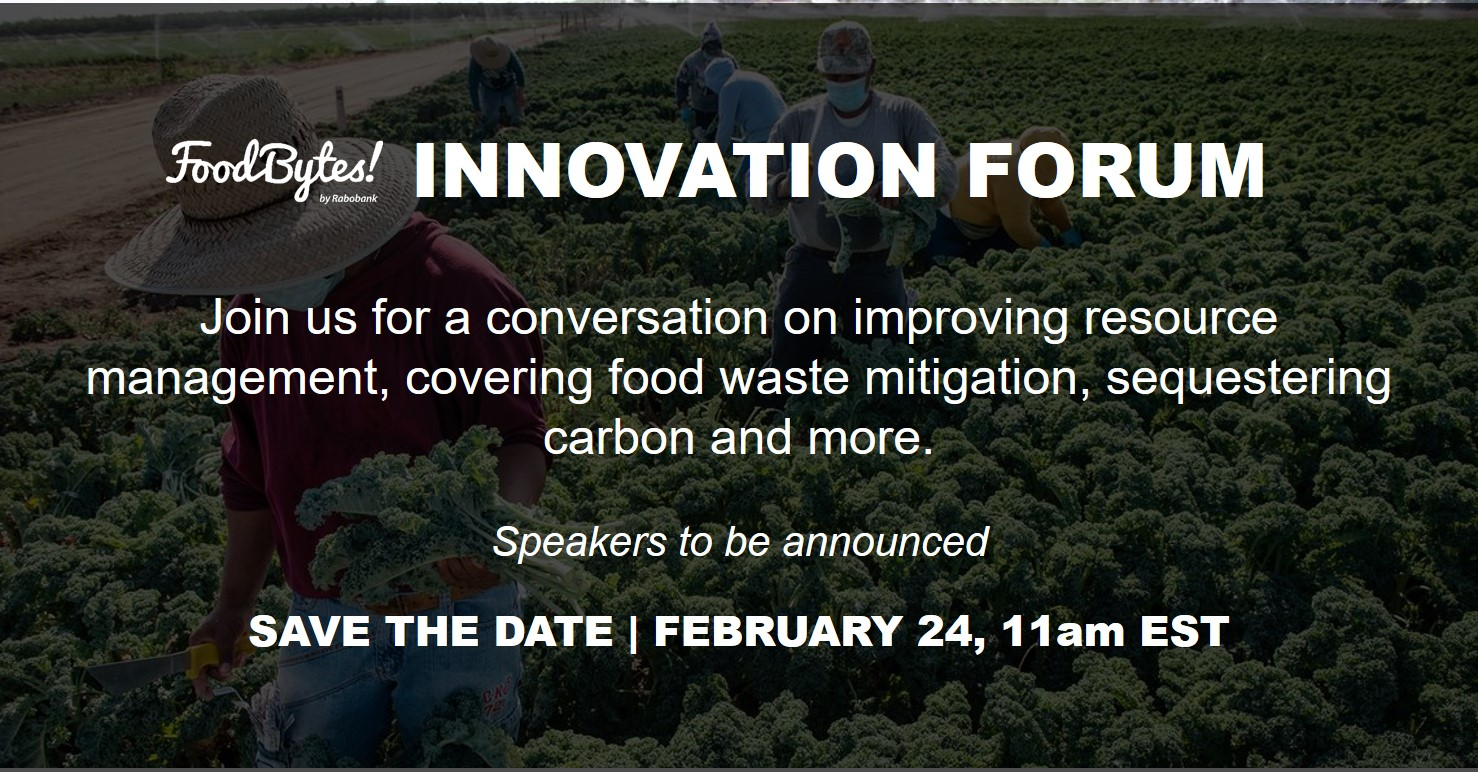 Save the Date_IRM_Image2