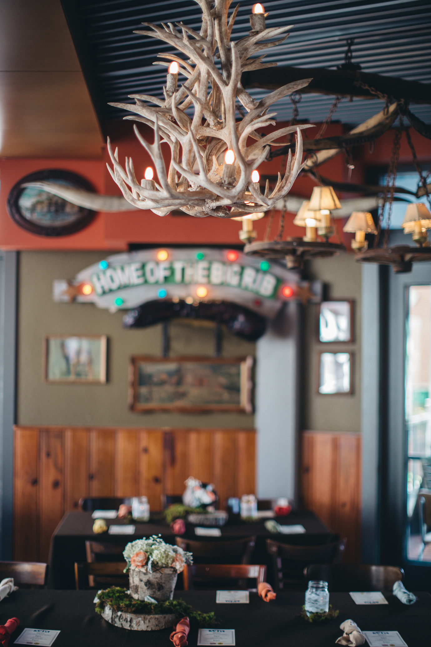 Barriba antler chandelier