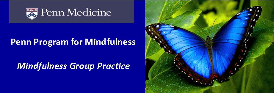 Mindfulness Group Practice (via Teleconference)