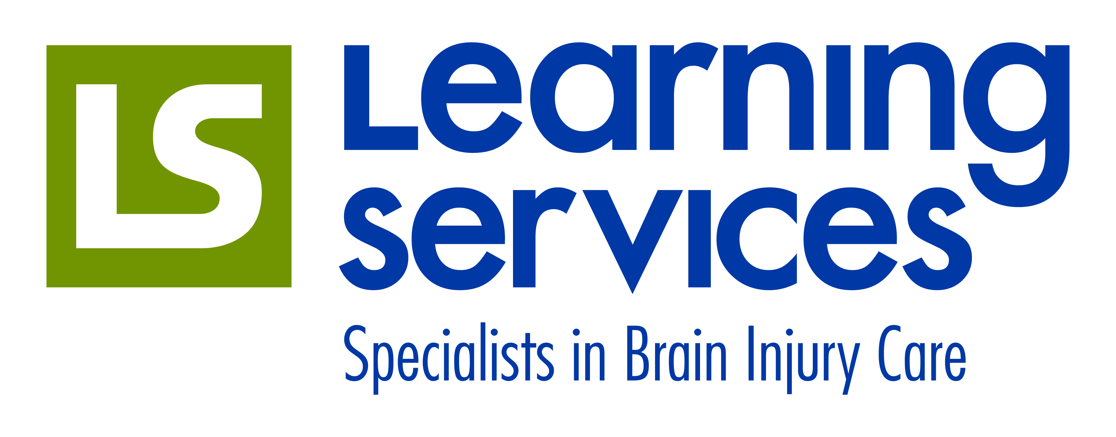 Learning Services Logo copy