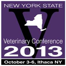 NYSVC 2013 logo cvent2