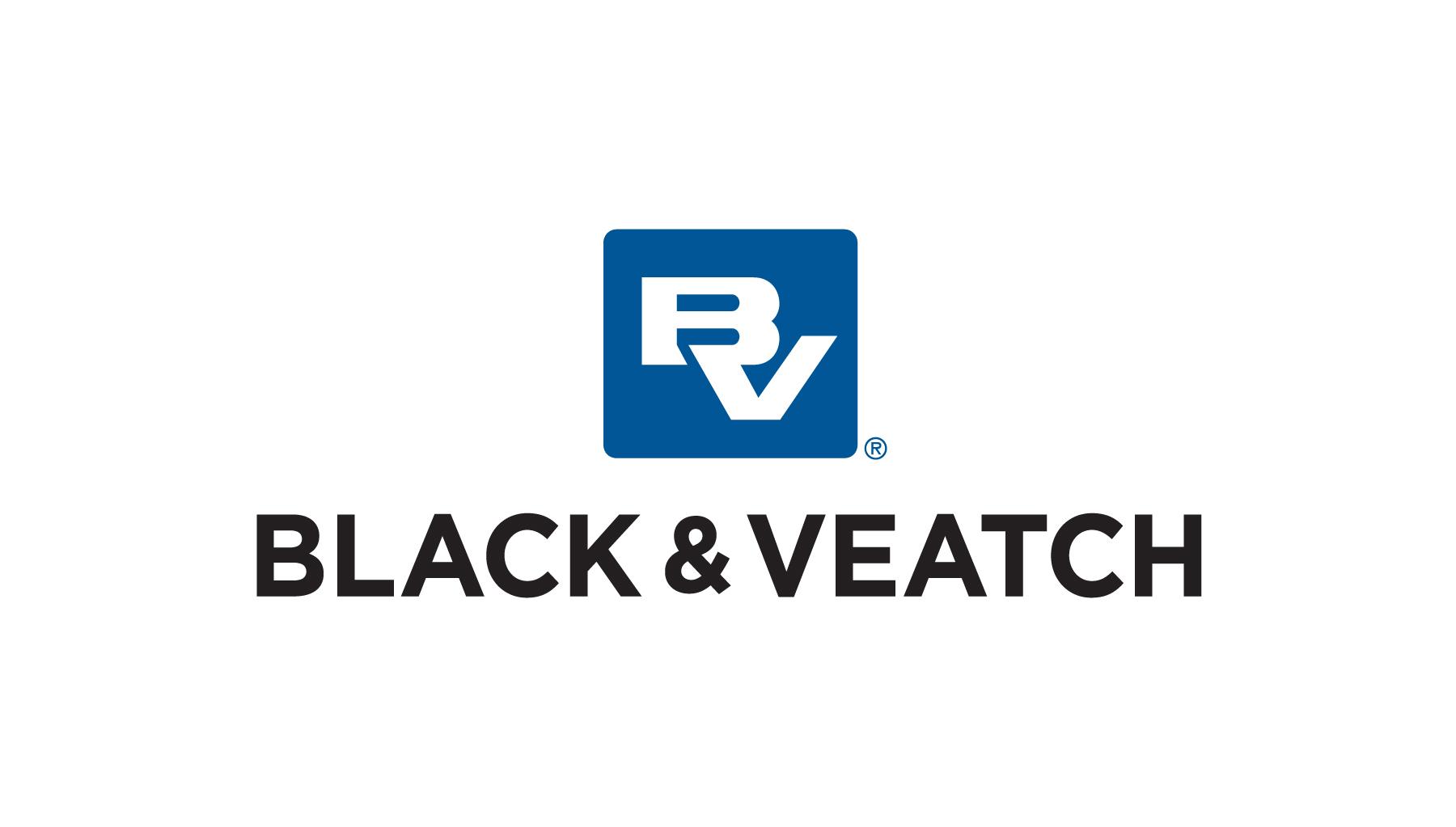 BV Logo Stacked (New) RGB