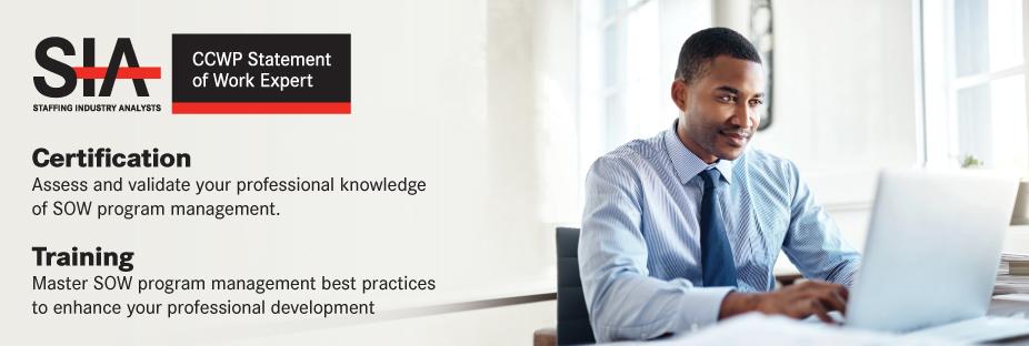 CCWP Statement of Work Expert