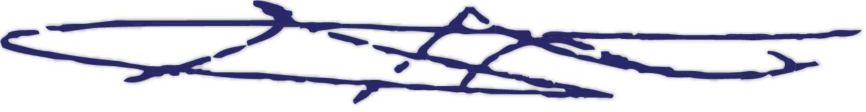 Aida Araissi signature blue-01