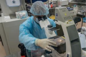 lab examination
