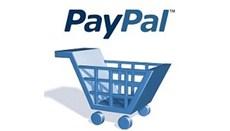 \\DESRV002\DEMGO1$\Desktop\PayPal