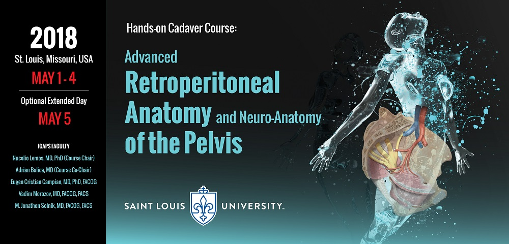 Advanced Retroperitoneal  Anatomy of the Pelvis with Focus on Pelvic Neuroanatomy and Complication Prevention in Minimally Invasive Surgery in Endometriosis, Urogynecology and Oncology