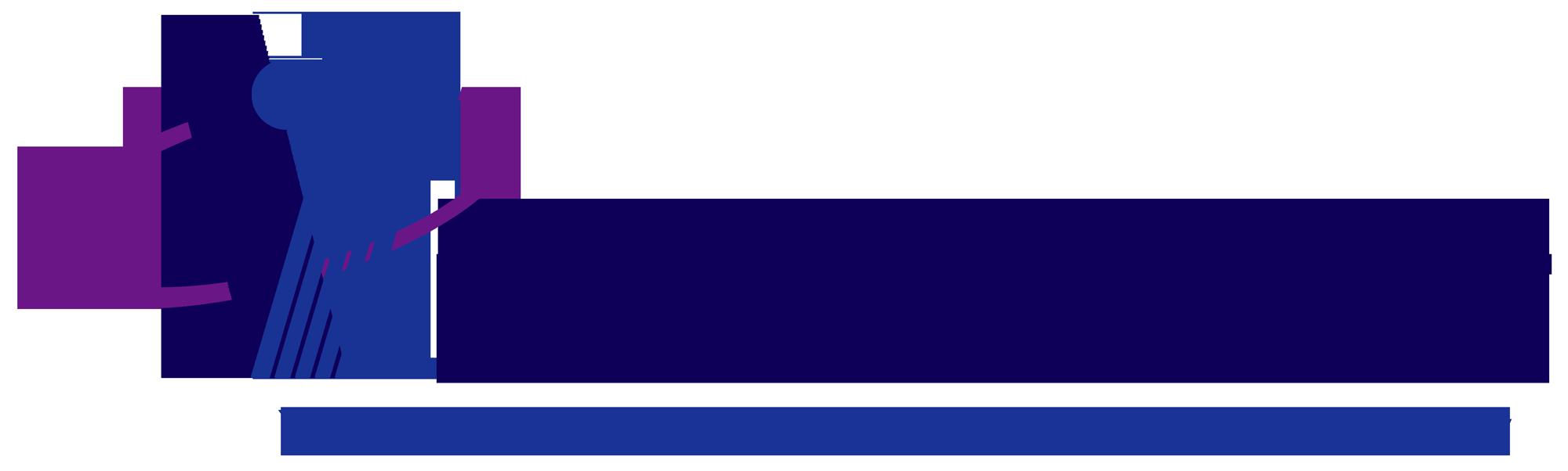 Vitelnet-Logo-Master-Med